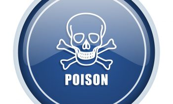 5 Things to Know About Accidental Poisoning in Elderly Adults