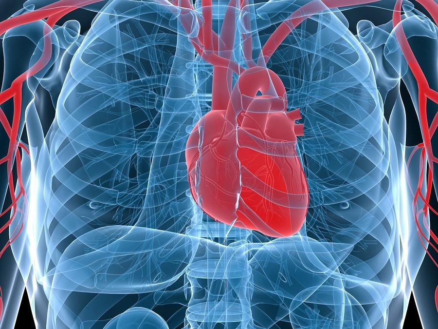 What Are Stents?